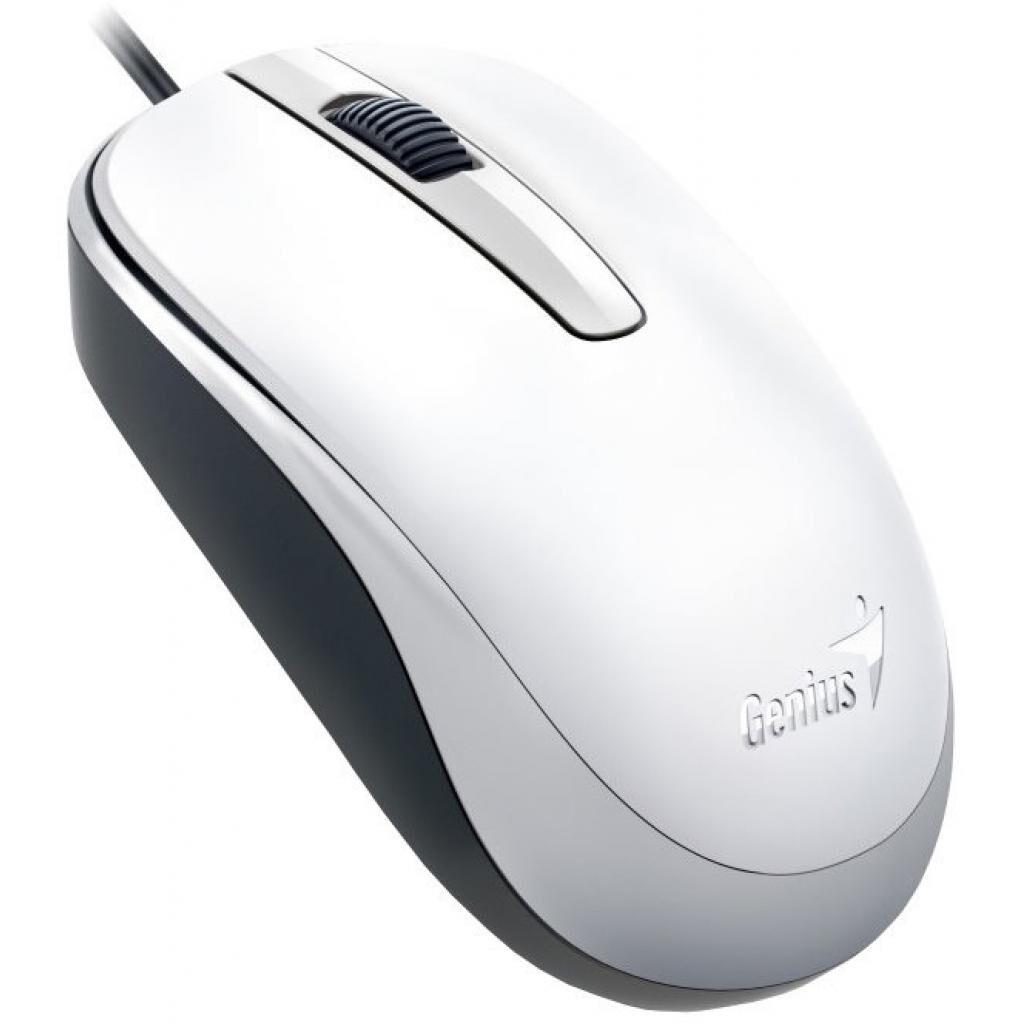 Мышка Genius DX-120 USB White (31010105102)