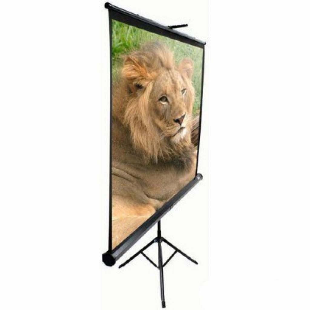 Проекционный экран T100UWV1 Elite Screens