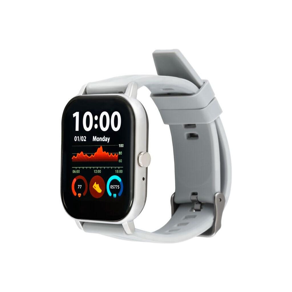 Смарт-часы Amico GO FUN Pulseoximeter and Tonometer gray (850474)
