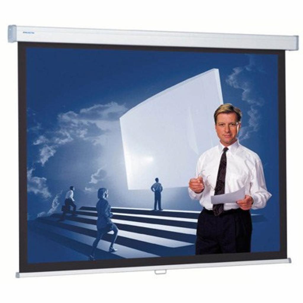 Проекционный экран ProScreen CSR 154x240 см Projecta (10200236)