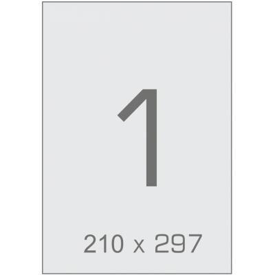 Этикетка самоклеящаяся TAMA 210х297 (1 на листі) с/кл (100листів) (17793)